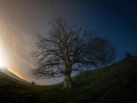 Sterne Fotografieren für Anfänger