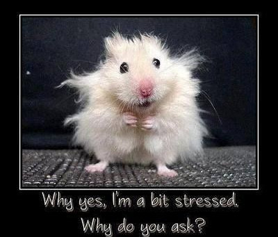 Stressed? Six ways to reduce stress in your life.