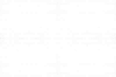 Grunge Background Light copy.png