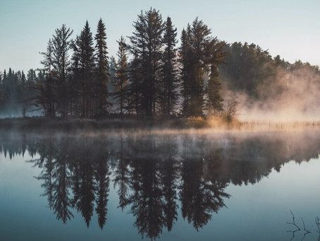 Leveraging the potential of self-reflection for the new year