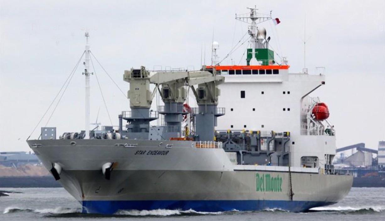 Reefer Vessels