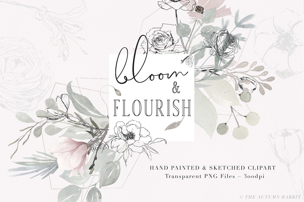 Bloom & Flourish - Floral Clipart by The Autumn Rabbit Ltd
