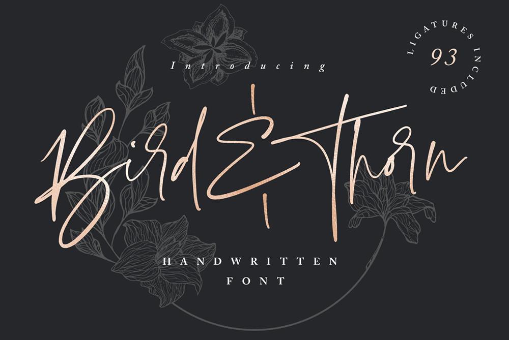 Bird & Thorn script font by Sam Parrett