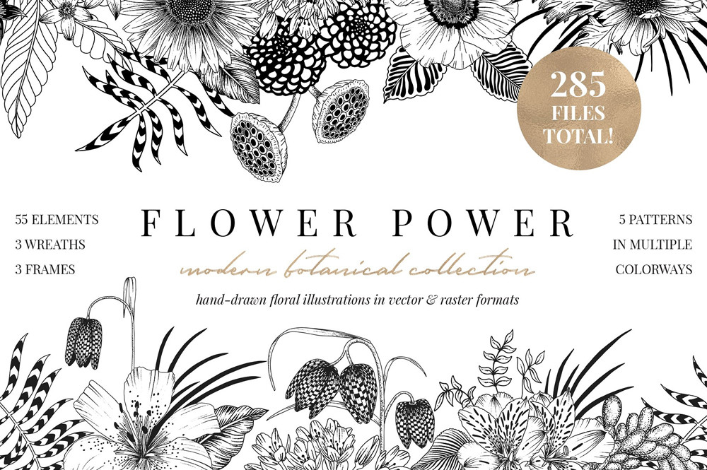 FLOWER POWER botanical illustrations by Sophia J Caldwell