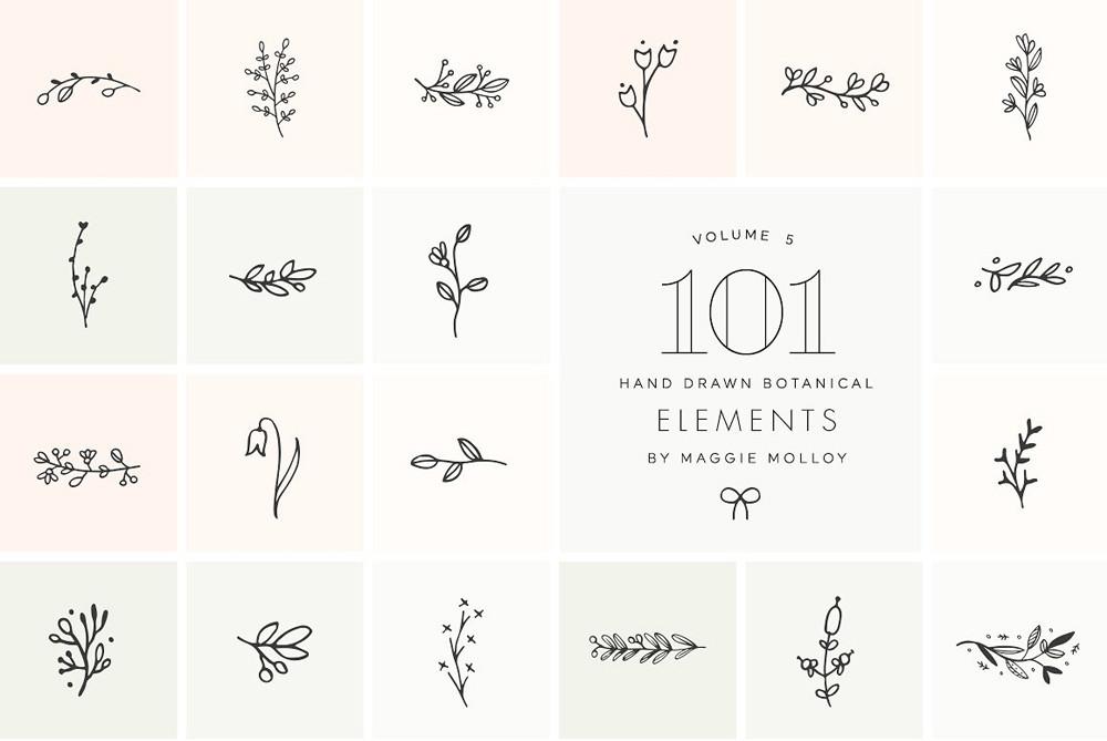 101 Hand Drawn Botanical Elements