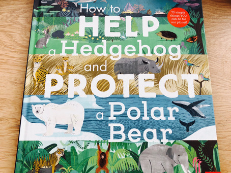 Review: How to Help a Hedgehog and Protect a Polar Bear