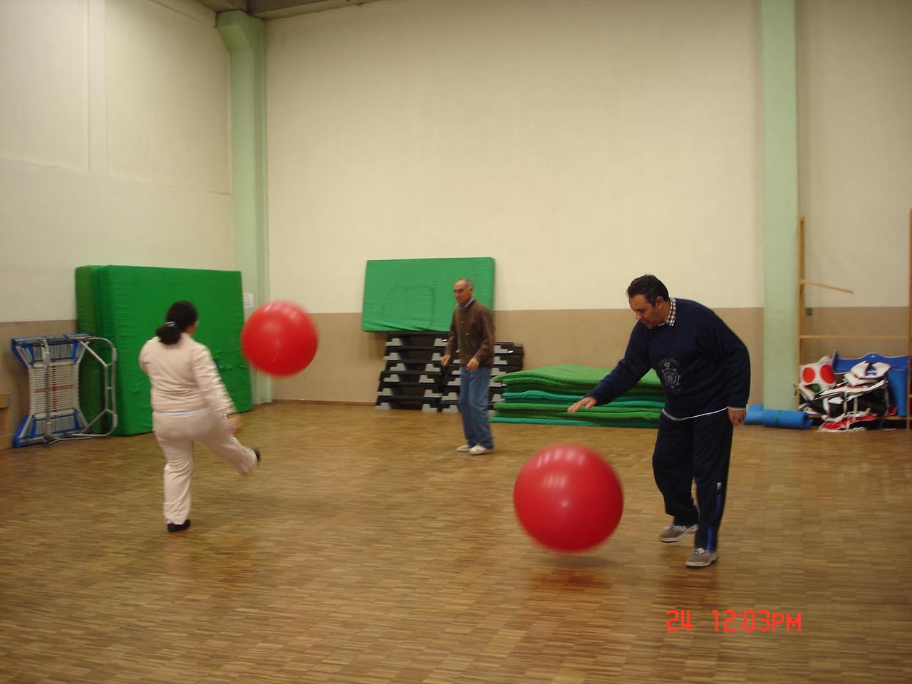 Actividade Desportiva - Ginástica