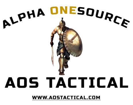 AOS Logo Seal Foundation (2).jpg