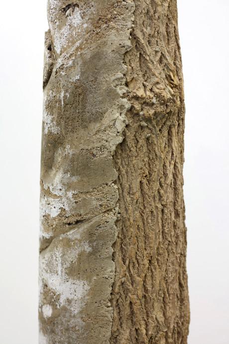 concrete log 3.2.jpg