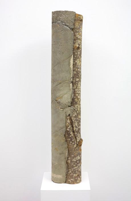 log concrete 2.1.jpg