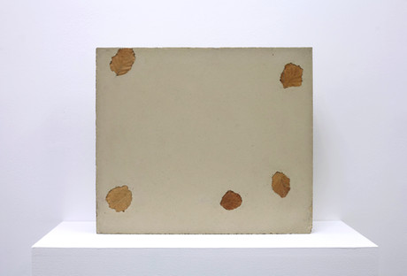 concrete leaf 1.1.jpg