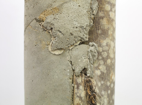 log concrete 2.3.jpg