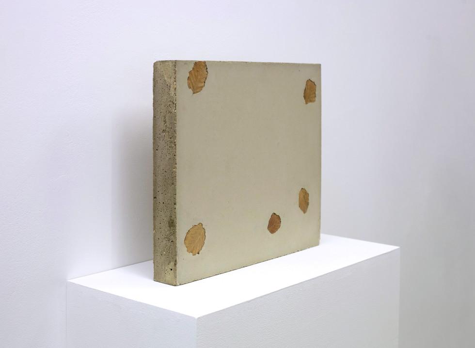 concrete leaf 1.3.jpg