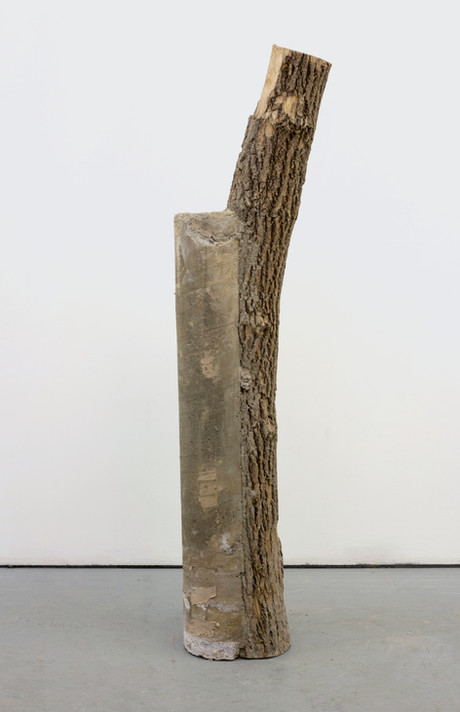 concrete log 1.1.jpg