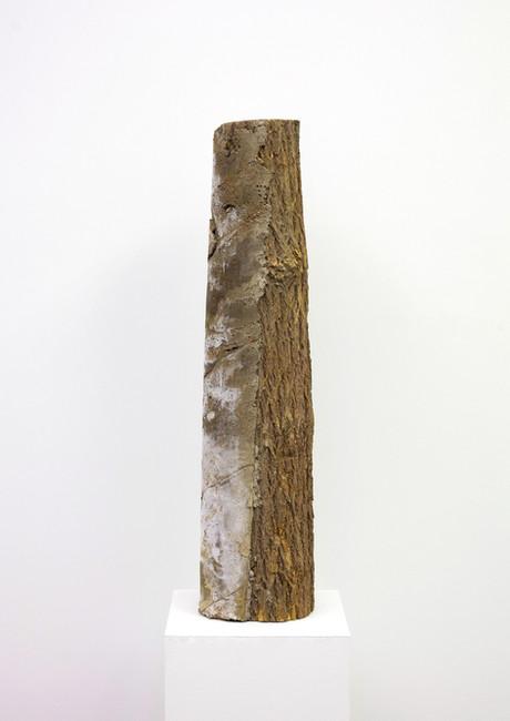 concrete log 3.1.jpg