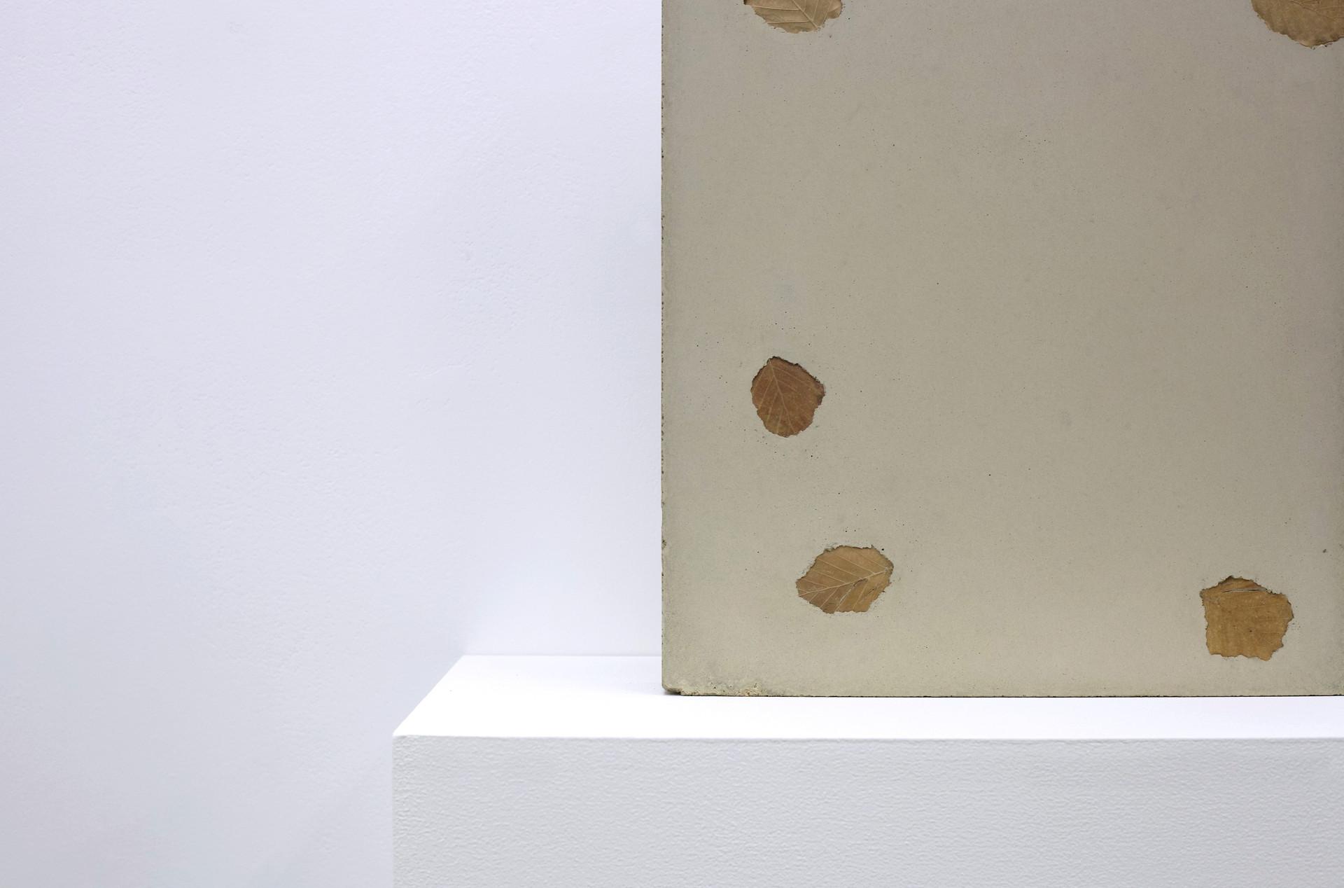 concrete leaf 1.2.jpg