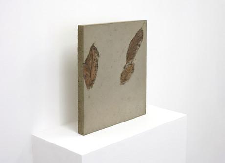 concrete leaf 2.3.jpg