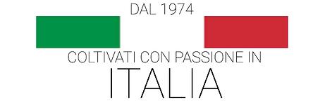coltivato in italia 800X250.png