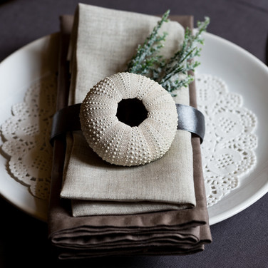 Place Setting Table top