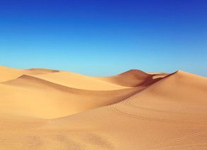 Are UK businesses burying their heads in the sand over the data and analytics talent shortage?
