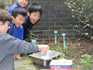 Our students learn English by making volcanoes
