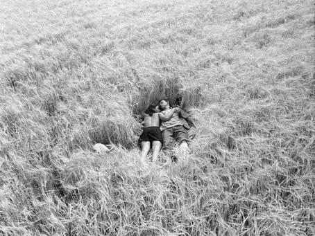 """Роберт Бернс и одно из самых красивых стихотворений из """"Над пропастью во ржи"""""""