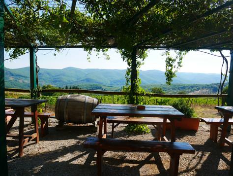 Tänk er en kall, i skuggan av vinrankorna, blickandes ut över dessa fält...