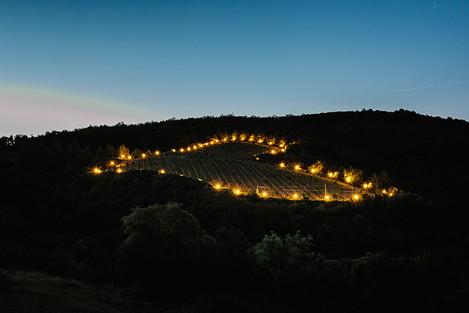 Om kvällen lyses vinfälten upp och formen bildar en hjärta.