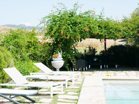 Prunkande lummigt poolområde