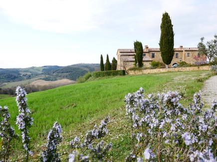 Villan ligger vackert belägen med flera b&b runt hörnet.