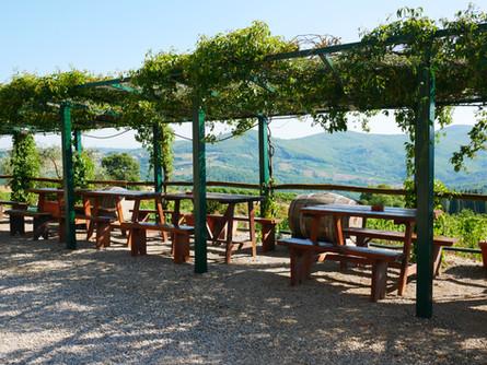 En skön plats för vindens fläktat och vy över vinfälten.