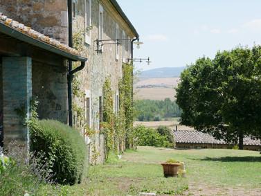 Det pampiga trädet framför villan
