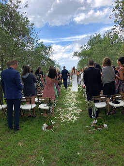 Symbolisk ceremoni i olivlunden