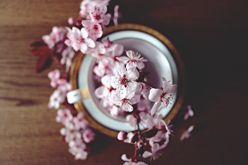 spring-2174750_1280.jpg
