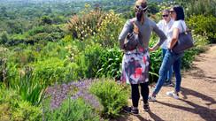 Rich ladies admire Kirstenbosch