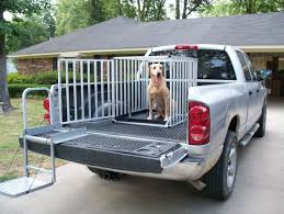 Transporting your Dog in the Bed of your Truck Safely