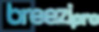 BreeziPro w-blue outline box.png