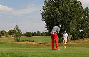 golf-3714919_1920.jpg