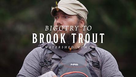 Bigotry2BrookTrout.jpg