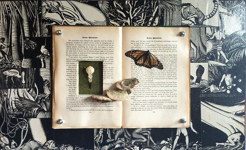 book art 3.jpg