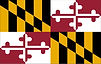 maryland-flag-vector-illustration-on-whi