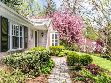One-level Living Perfection in Picturesque Poplar Hill