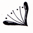 decoration copy 27 flipped.png