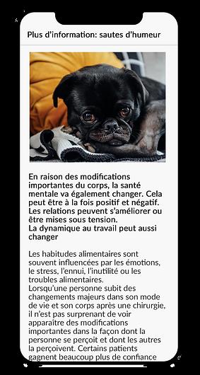 FR baria info mood_edited-1.png