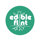 ef-green-logo-01_1.png