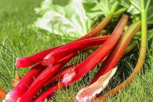 Rhubarb, Canada Red
