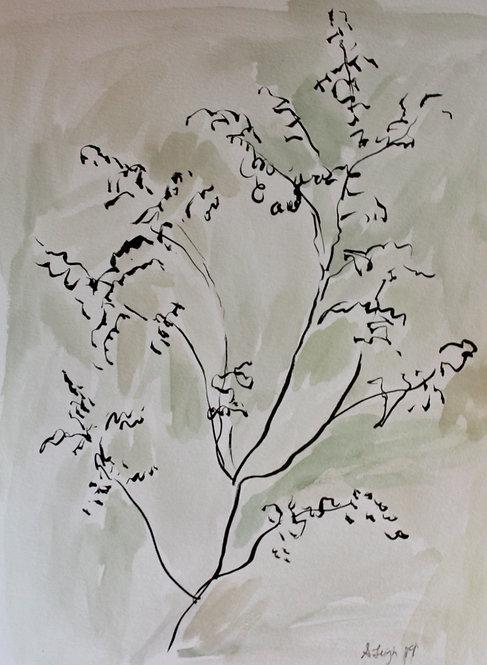"""Gestural Botanical 1"""