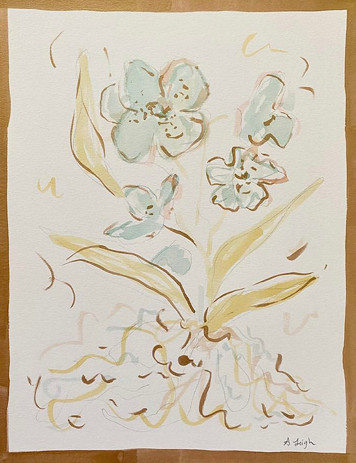 """""""Orchid Four"""""""
