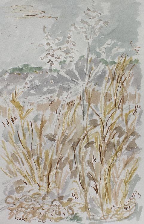"""Lavender Wind"""