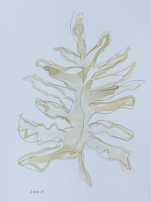 """Palm Leaf II"""